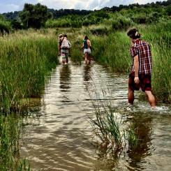 boodaville 2015 the trek