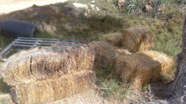 materials - straw
